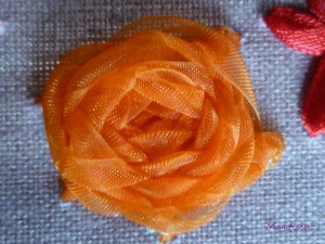 rose-300x225 Fleurs