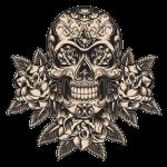 kisspng-calavera-human-skull-symbolism-day-of-the-dead-ske-skull-5a7bfbe9af7dd3.0366784115180748577188